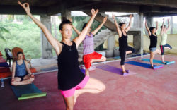 yoga teacher training india rishikesh